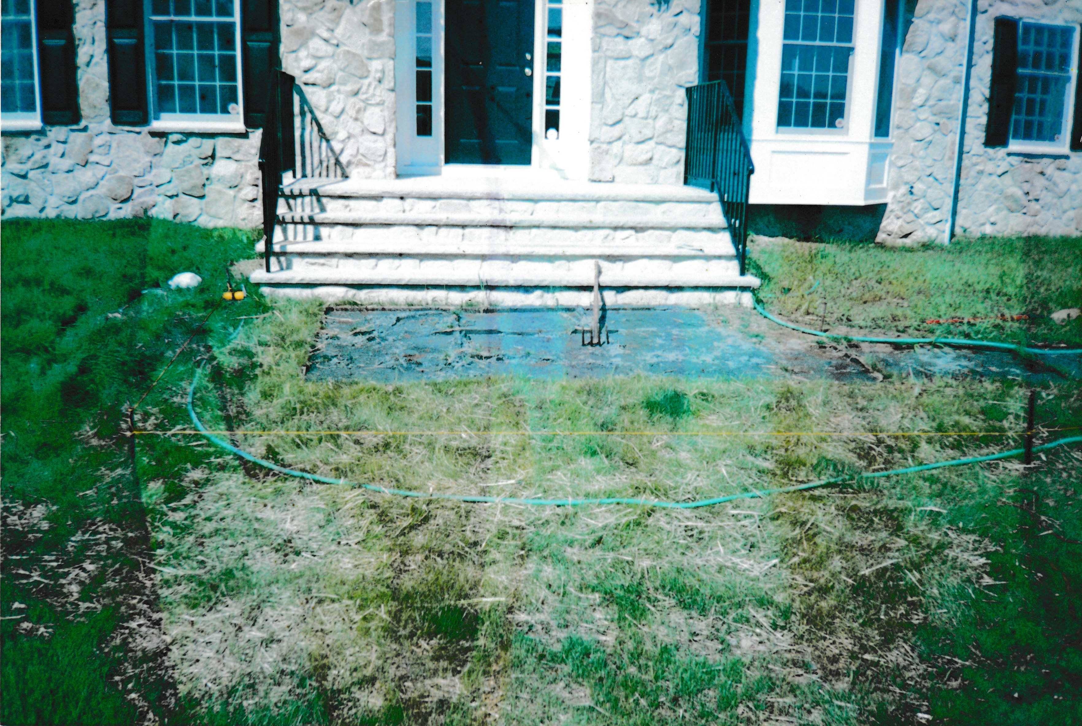 Neglected lawn in front of stairs